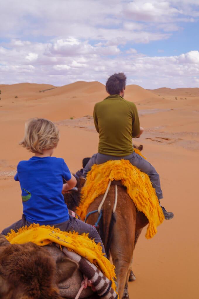 Sahara camel riding