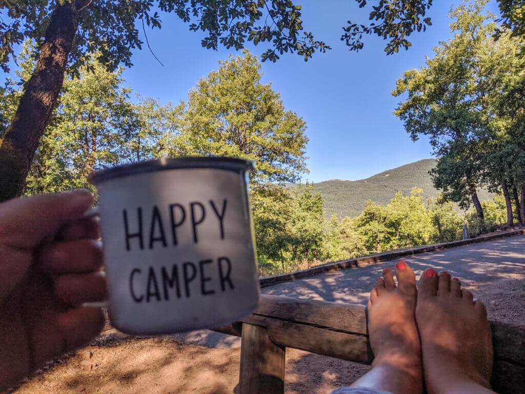 camping mug with mountain view