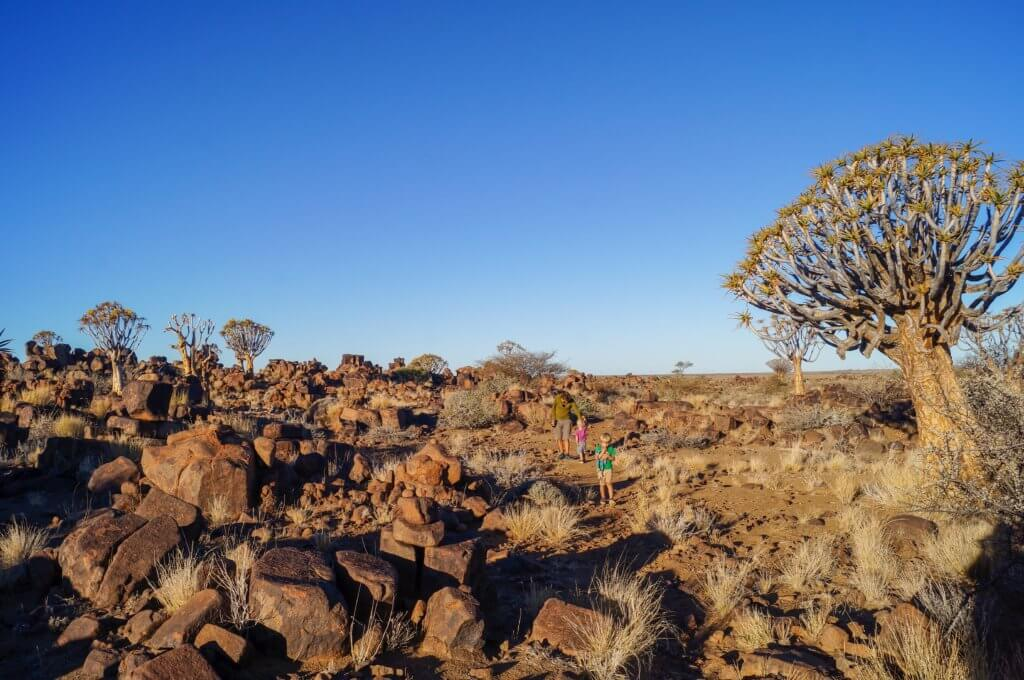 boulders and quiver trees at Garas Park Rest Camp