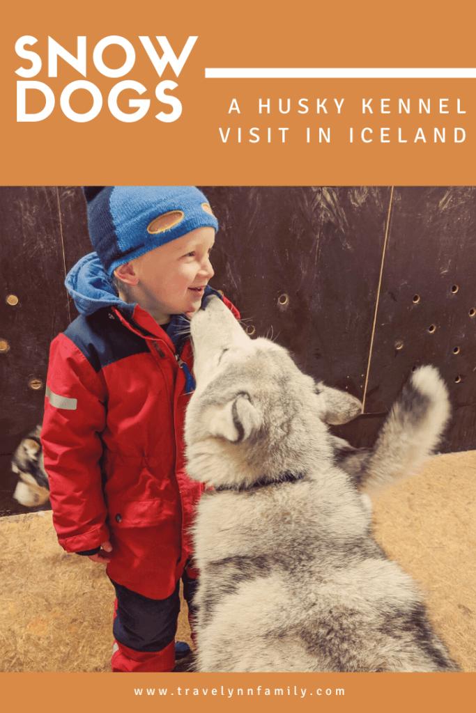 Husky experience pin