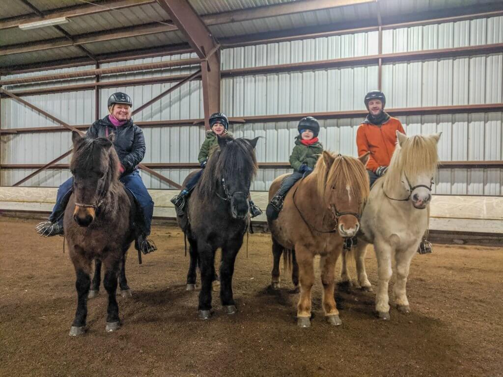 horse riding at Gauksmýri Lodge