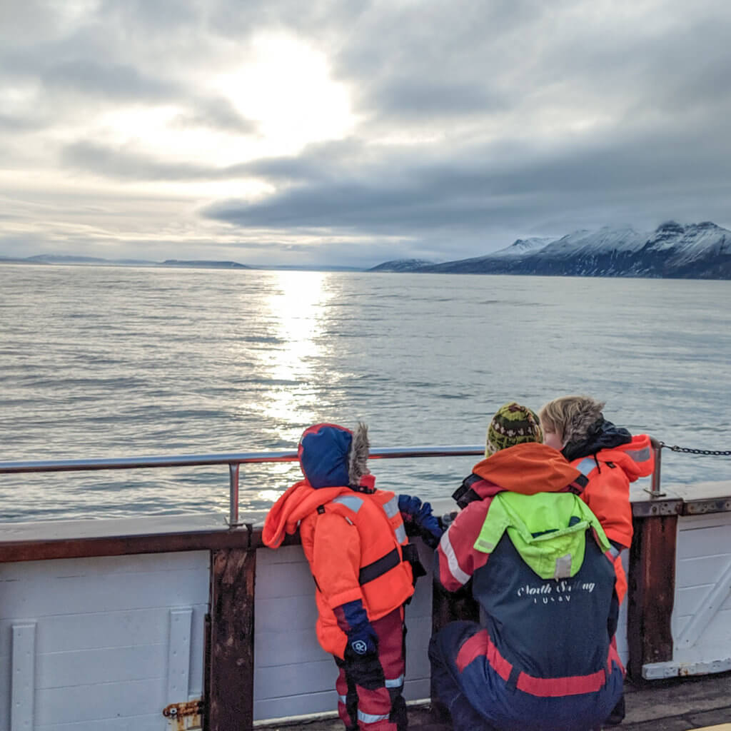 looking for whales on our Husavik whale watching tour
