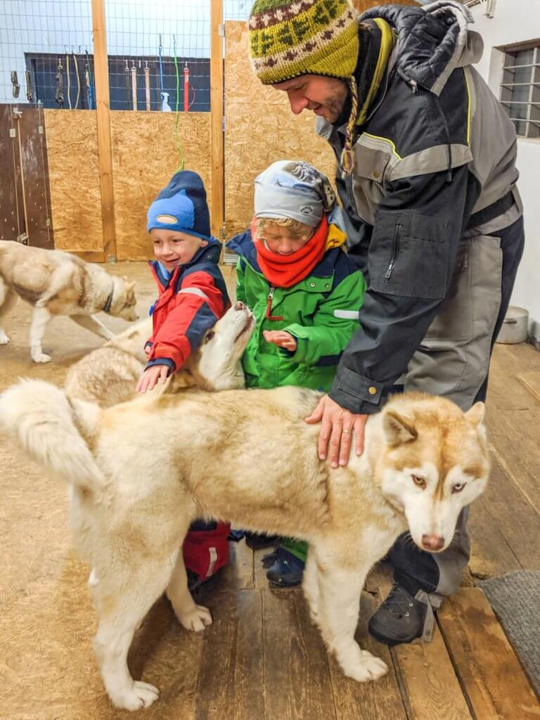 patting the huskies at Snow Dogs