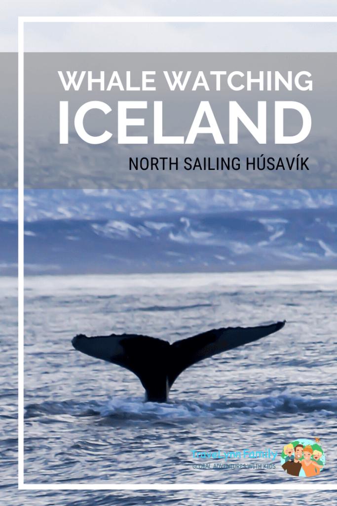 Husavik whale watching pin
